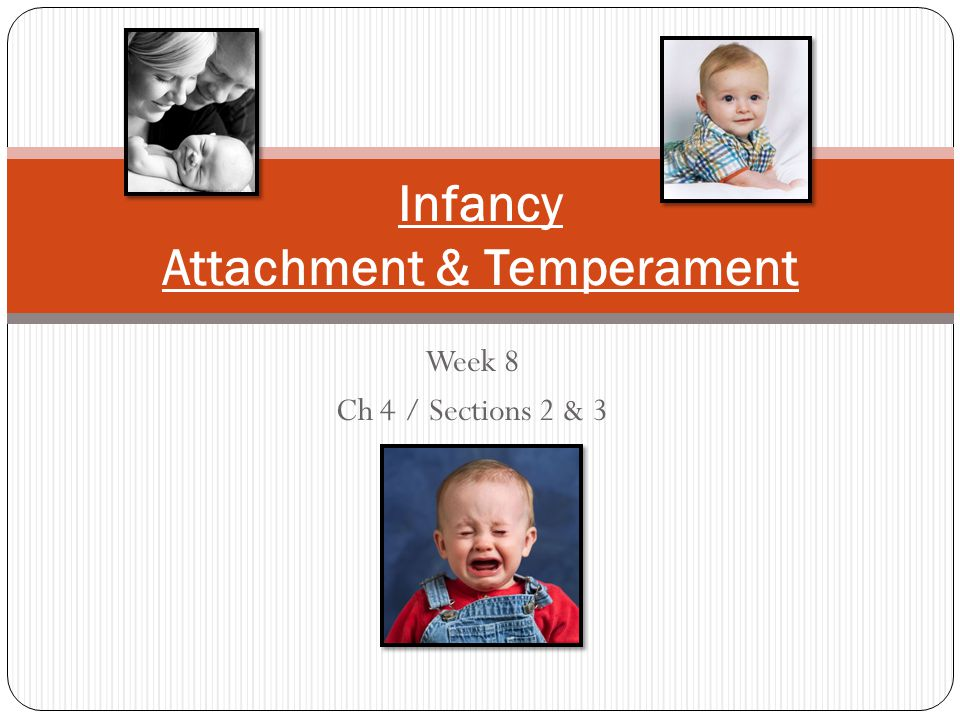 Week 8 Ch 4 / Sections 2 & 3 Infancy Attachment & Temperament