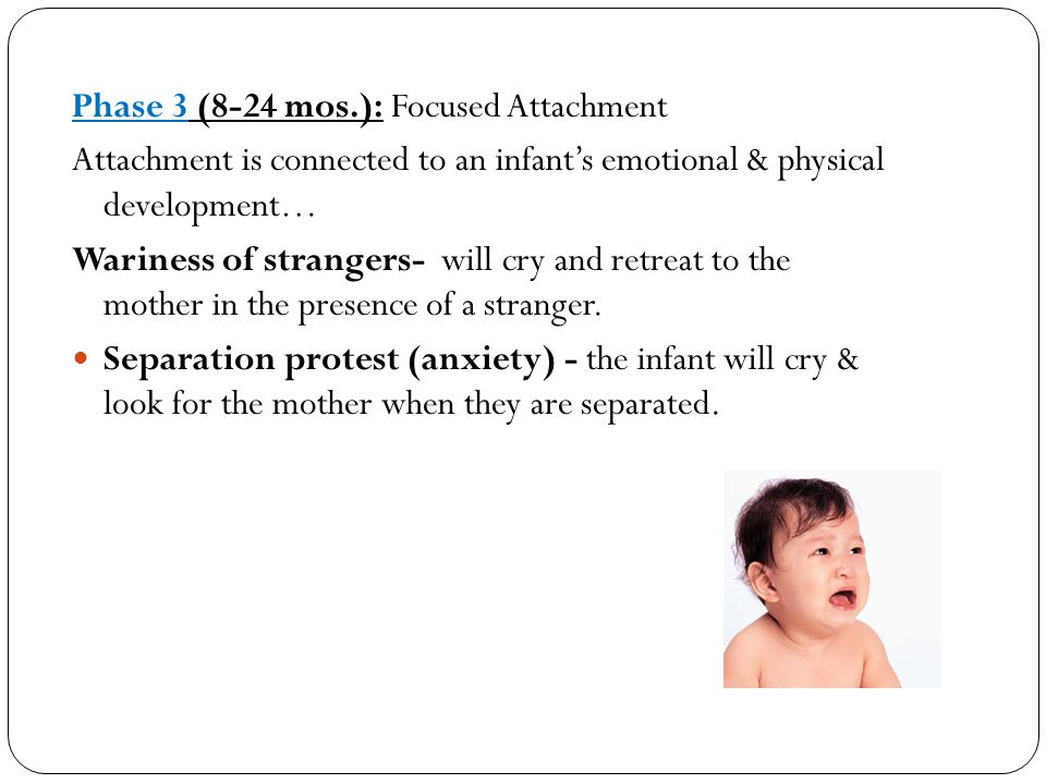 Phase 3 (8-24 mos.): Focused Attachment Attachment is connected to an infant's emotional & physical development… Wariness of strangers- will cry and r