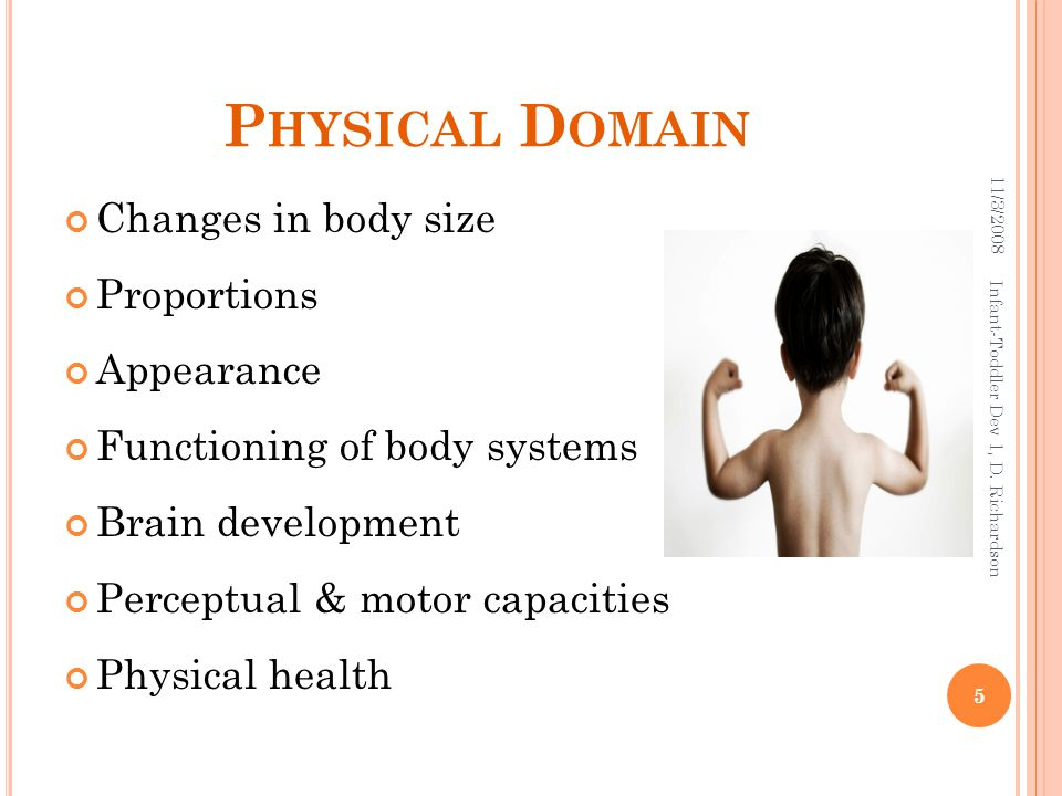 P HYSICAL D OMAIN Changes in body size Proportions Appearance Functioning of body systems Brain development Perceptual & motor capacities Physical health 11/3/2008 5 Infant-Toddler Dev 1, D.
