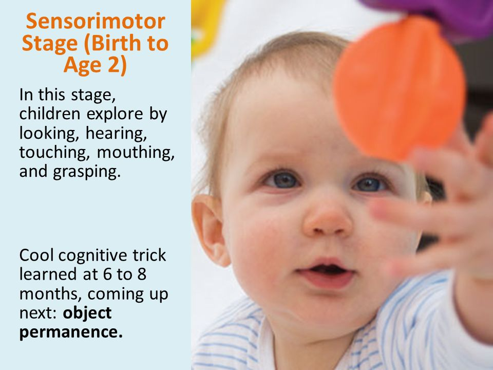 Sensorimotor Stage (Birth to Age 2) In this stage, children explore by looking, hearing, touching, mouthing, and grasping. Cool cognitive trick learne