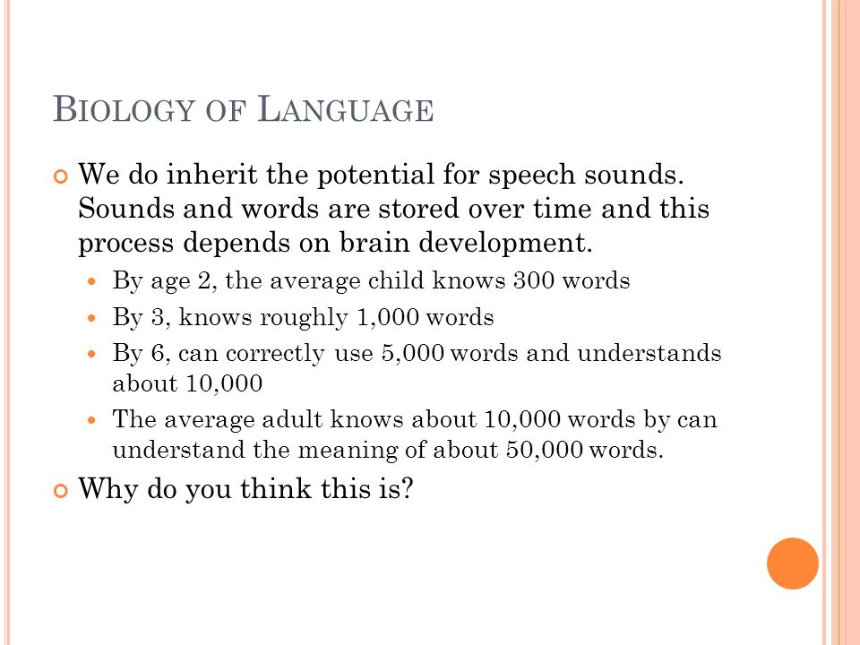 B IOLOGY OF L ANGUAGE We do inherit the potential for speech sounds. Sounds and words are stored over time and this process depends on brain developme