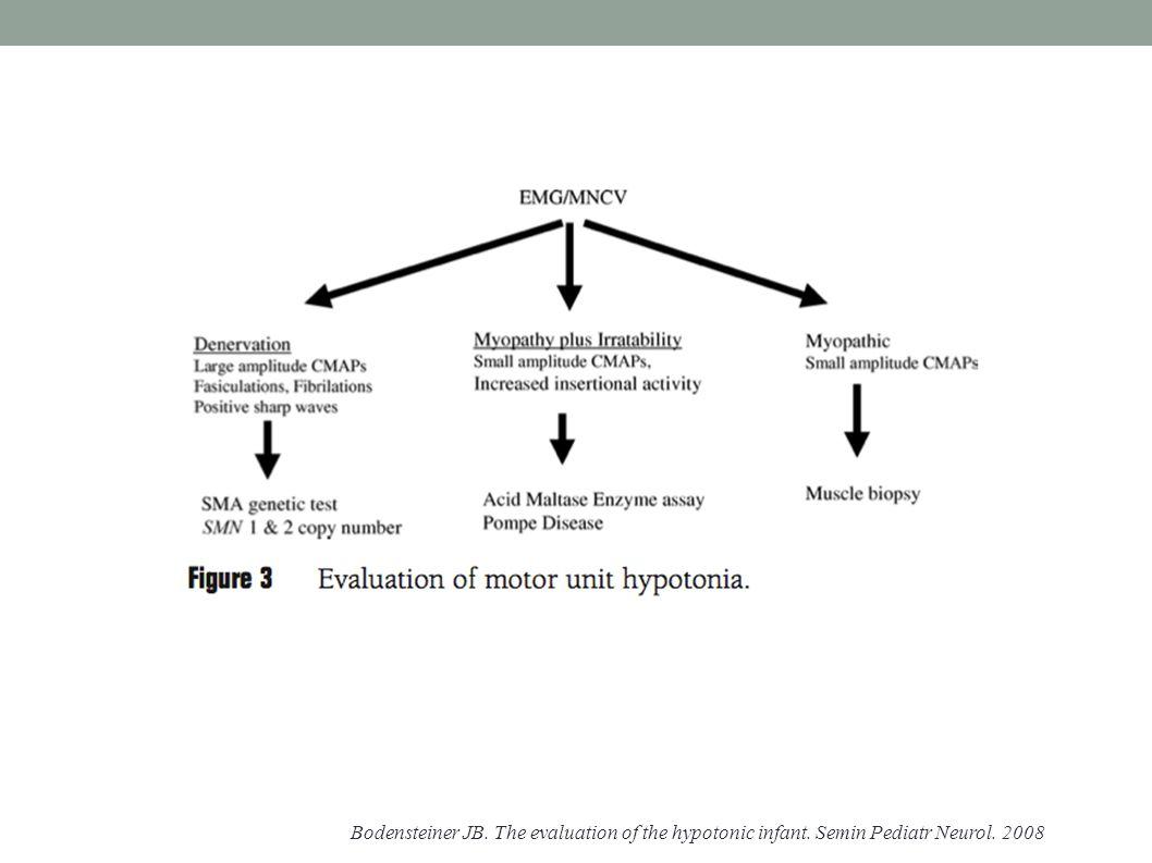 Bodensteiner JB. The evaluation of the hypotonic infant. Semin Pediatr Neurol. 2008