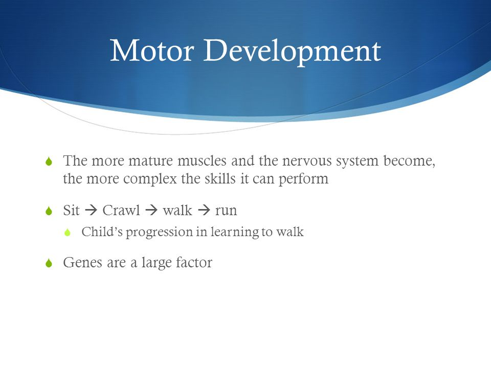 Motor Development  The more mature muscles and the nervous system become, the more complex the skills it can perform  Sit  Crawl  walk  run  Child's progression in learning to walk  Genes are a large factor