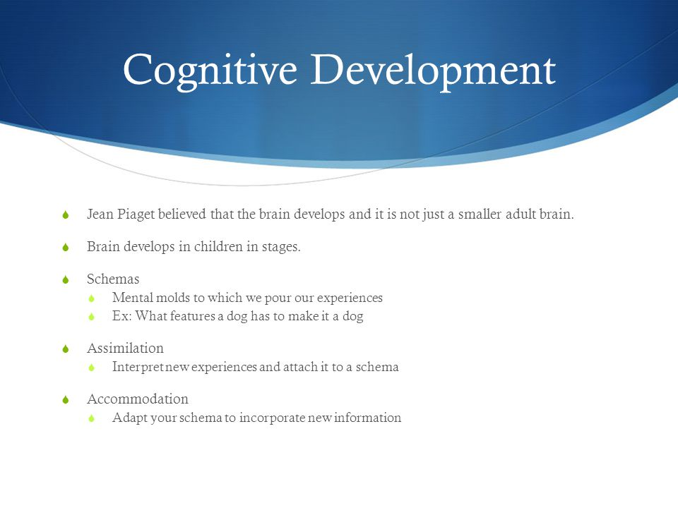 Cognitive Development  Jean Piaget believed that the brain develops and it is not just a smaller adult brain.  Brain develops in children in stages.