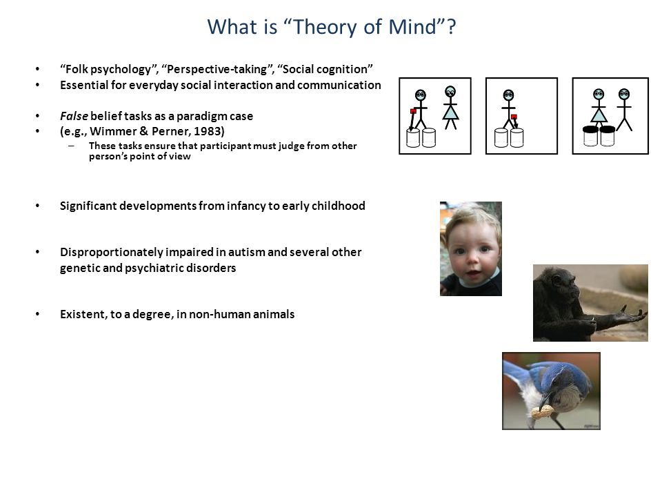 Conceptual knowledge about mental states Represent alternative perspectives Keep up.