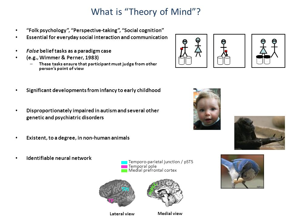 Theory of mind in adults? But don't adults have a theory of mind……?