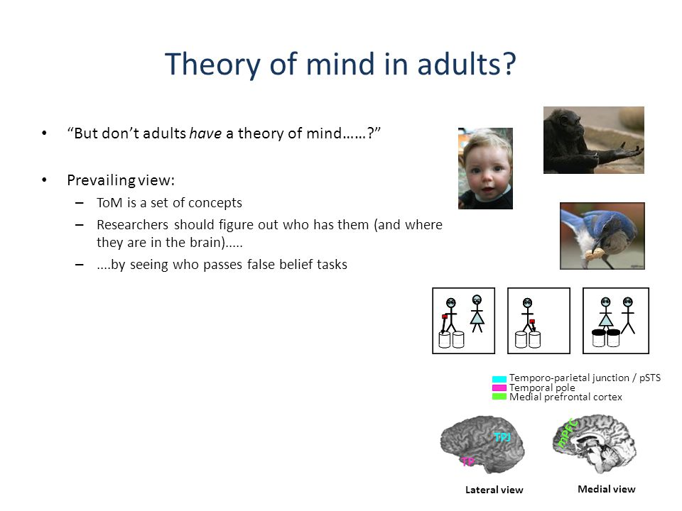 Theory of mind in adults.