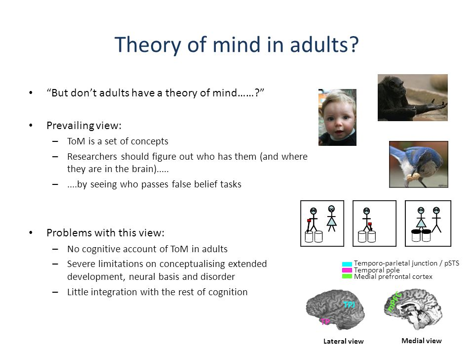 What might we expect Mindreading to involve.