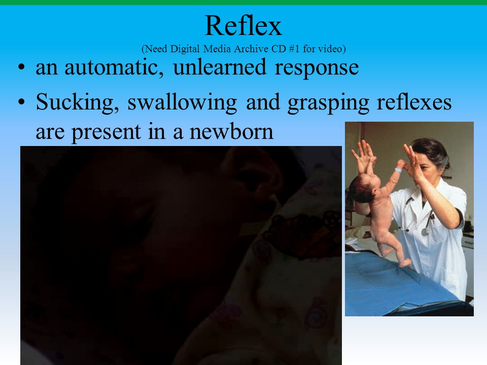 Reflex (Need Digital Media Archive CD #1 for video) an automatic, unlearned response Sucking, swallowing and grasping reflexes are present in a newbor