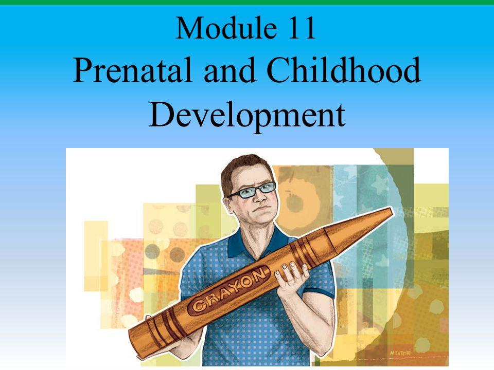 Prenatal and Childhood Development Module 11