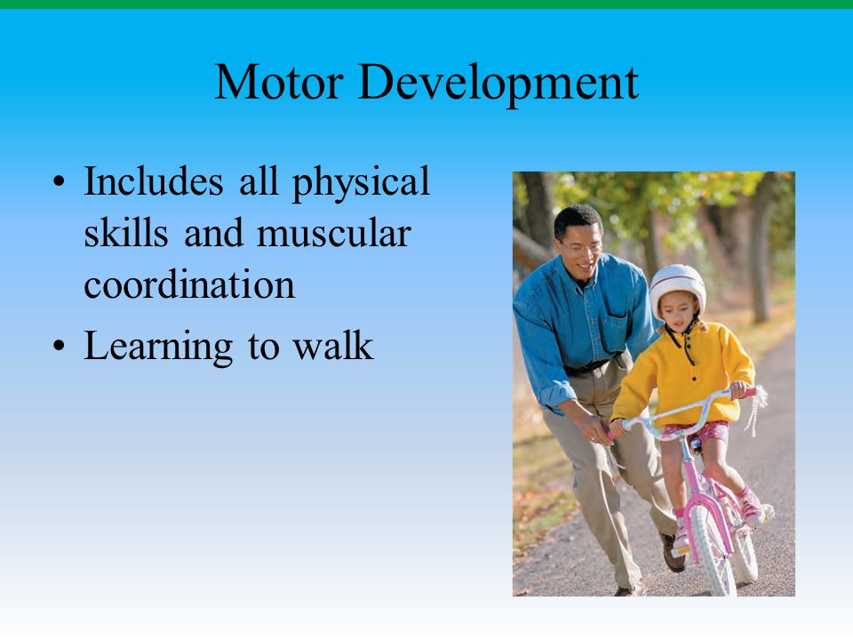 Motor Development Includes all physical skills and muscular coordination Learning to walk
