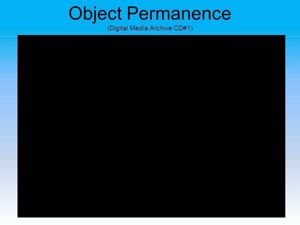 Object Permanence (Digital Media Archive CD#1)