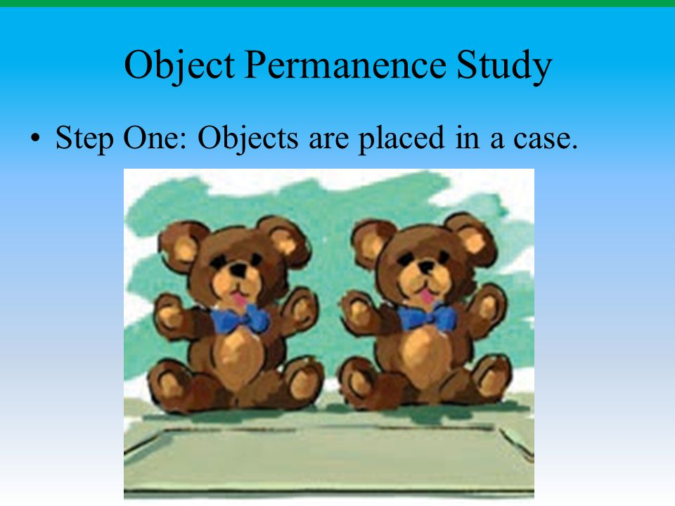 Object Permanence Study Step One: Objects are placed in a case.