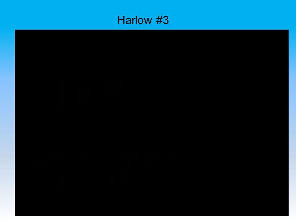 Harlow #3