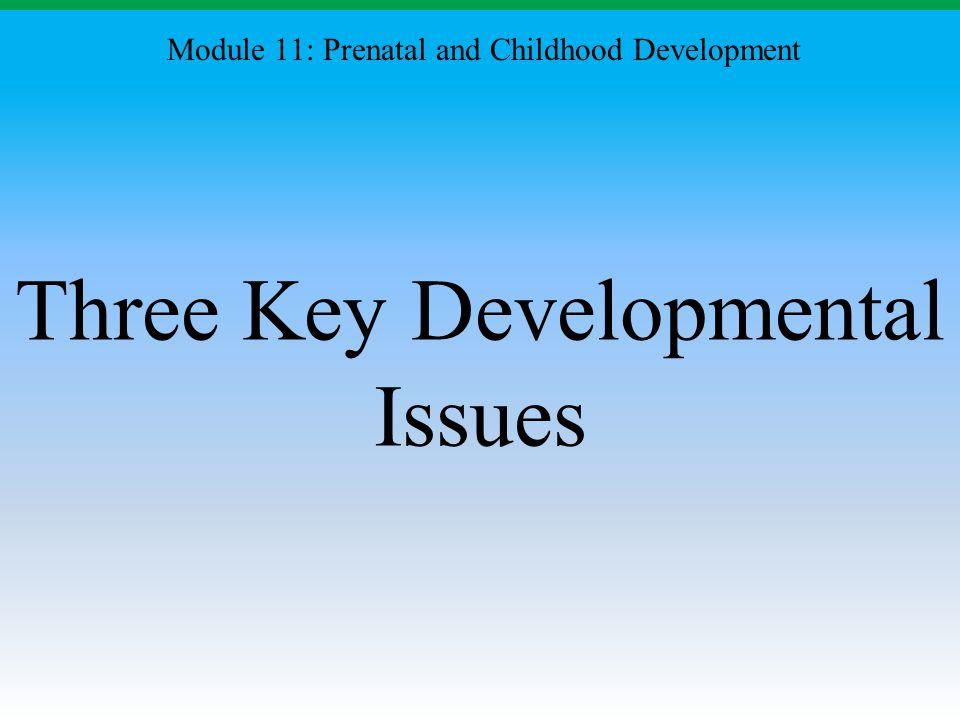 Three Key Developmental Issues Module 11: Prenatal and Childhood Development