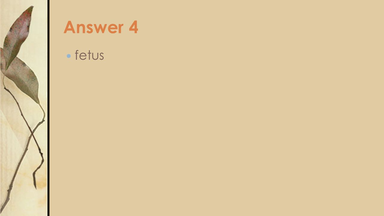 Answer 4 fetus