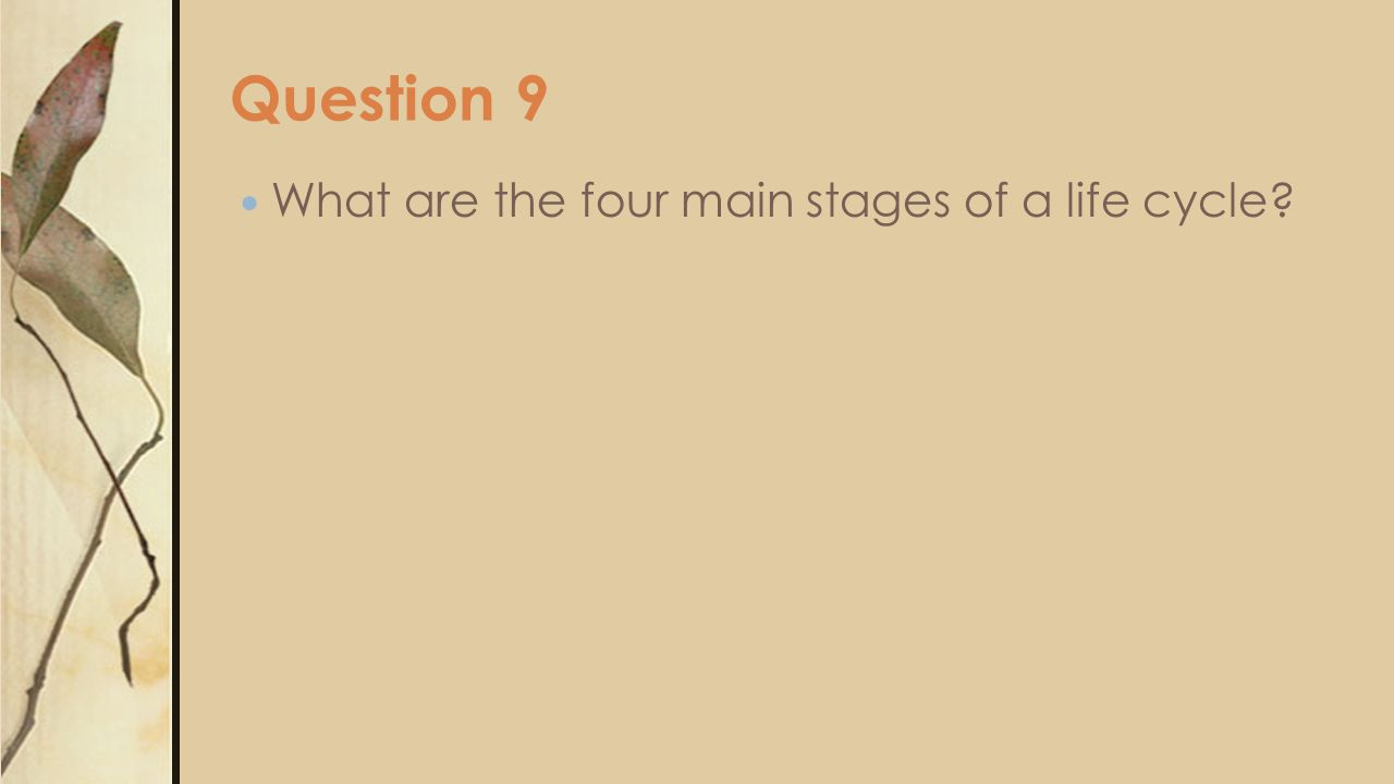 Question 9 What are the four main stages of a life cycle?