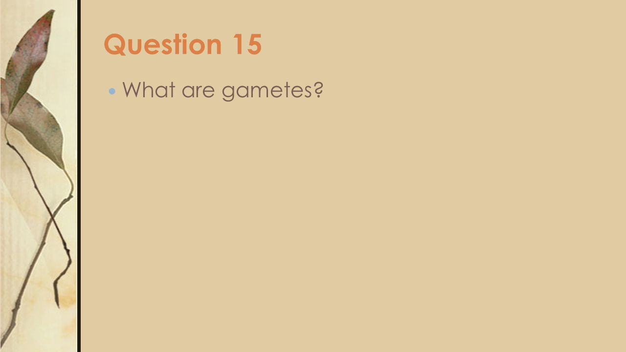 Question 15 What are gametes?