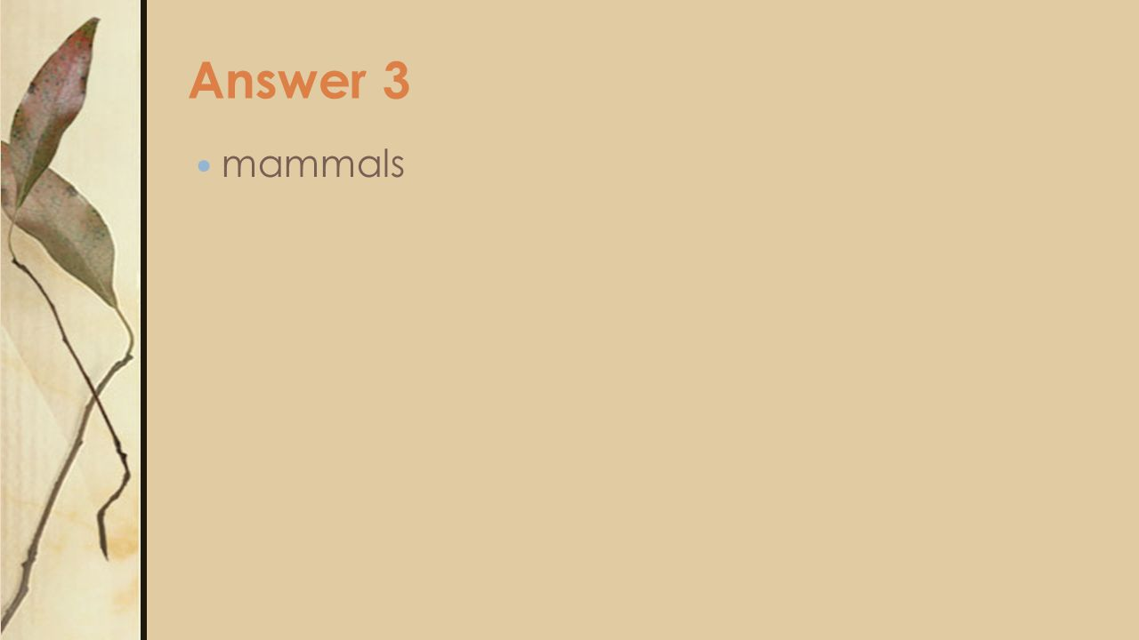 Answer 3 mammals