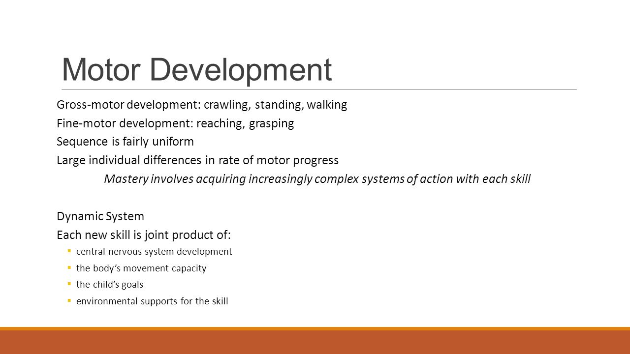 Motor Development Gross-motor development: crawling, standing, walking Fine-motor development: reaching, grasping Sequence is fairly uniform Large individual differences in rate of motor progress Mastery involves acquiring increasingly complex systems of action with each skill Dynamic System Each new skill is joint product of:  central nervous system development  the body's movement capacity  the child's goals  environmental supports for the skill