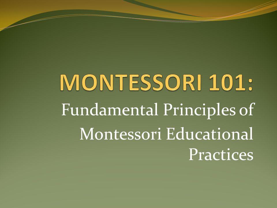 Fundamental Principles of Montessori Educational Practices