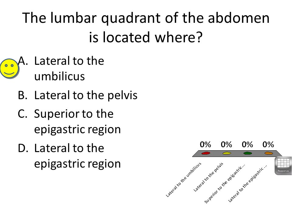 The lumbar quadrant of the abdomen is located where? A.Lateral to the umbilicus B.Lateral to the pelvis C.Superior to the epigastric region D.Lateral