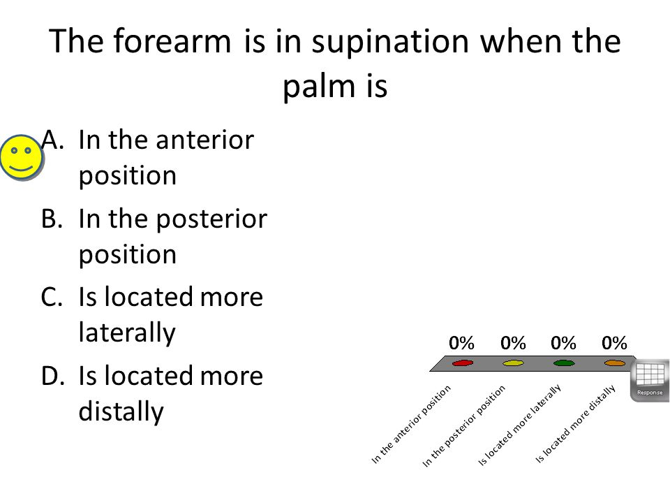 The forearm is in supination when the palm is A.In the anterior position B.In the posterior position C.Is located more laterally D.Is located more distally