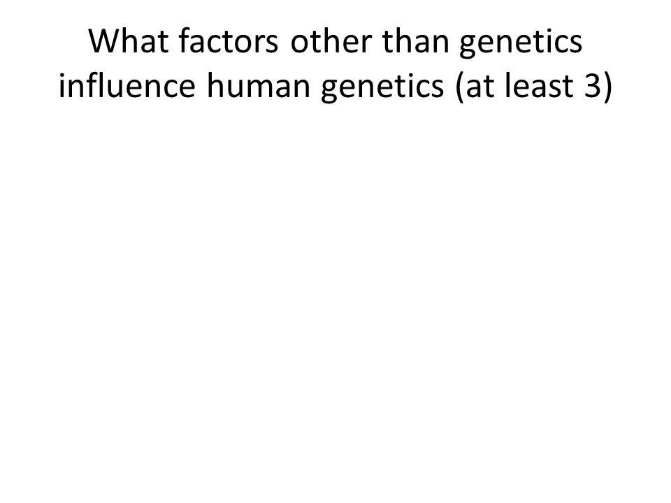 What factors other than genetics influence human genetics (at least 3)