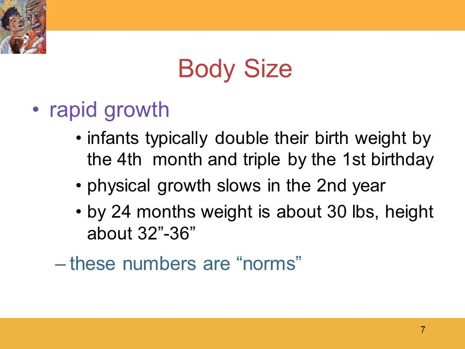 7 Body Size rapid growth infants typically double their birth weight by the 4th month and triple by the 1st birthday physical growth slows in the 2nd