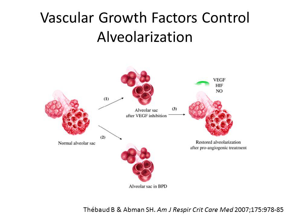 Vascular Growth Factors Control Alveolarization Thébaud B & Abman SH.