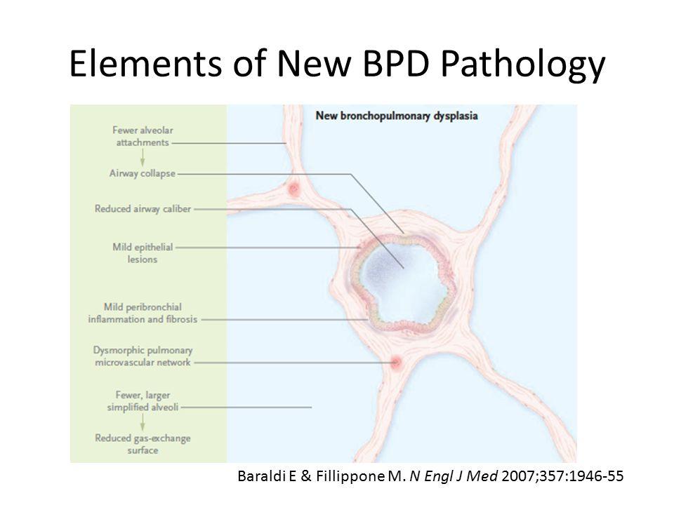 Elements of New BPD Pathology Baraldi E & Fillippone M. N Engl J Med 2007;357:1946-55