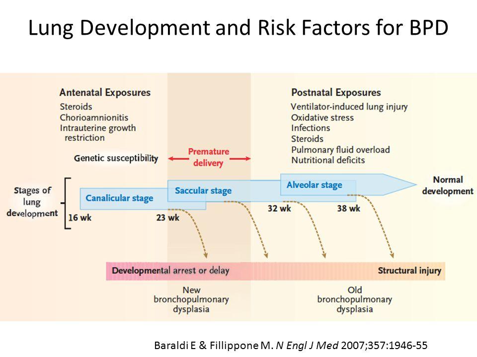 Lung Development and Risk Factors for BPD Baraldi E & Fillippone M. N Engl J Med 2007;357:1946-55