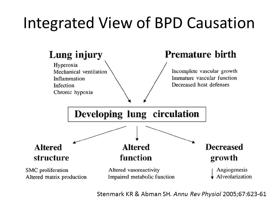 Integrated View of BPD Causation Stenmark KR & Abman SH. Annu Rev Physiol 2005;67:623-61