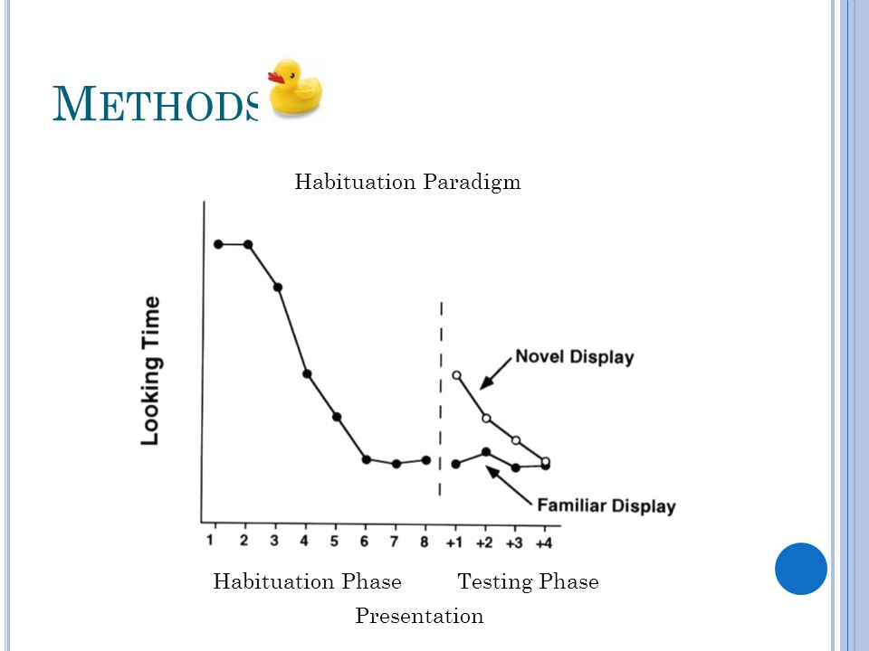 M ETHODS Habituation Paradigm Presentation Habituation PhaseTesting Phase