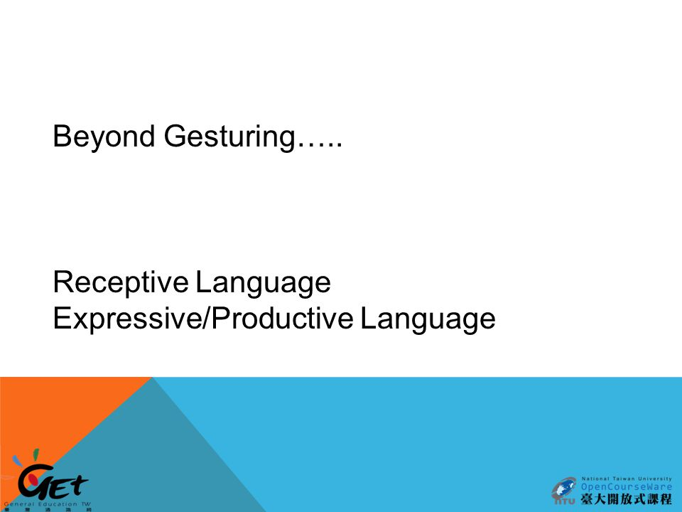Beyond Gesturing….. Receptive Language Expressive/Productive Language