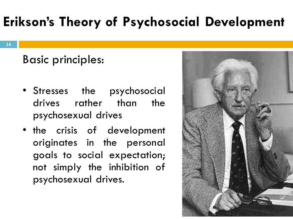 Basic principles: Stresses the psychosocial drives rather than the psychosexual drives the crisis of development originates in the personal goals to s