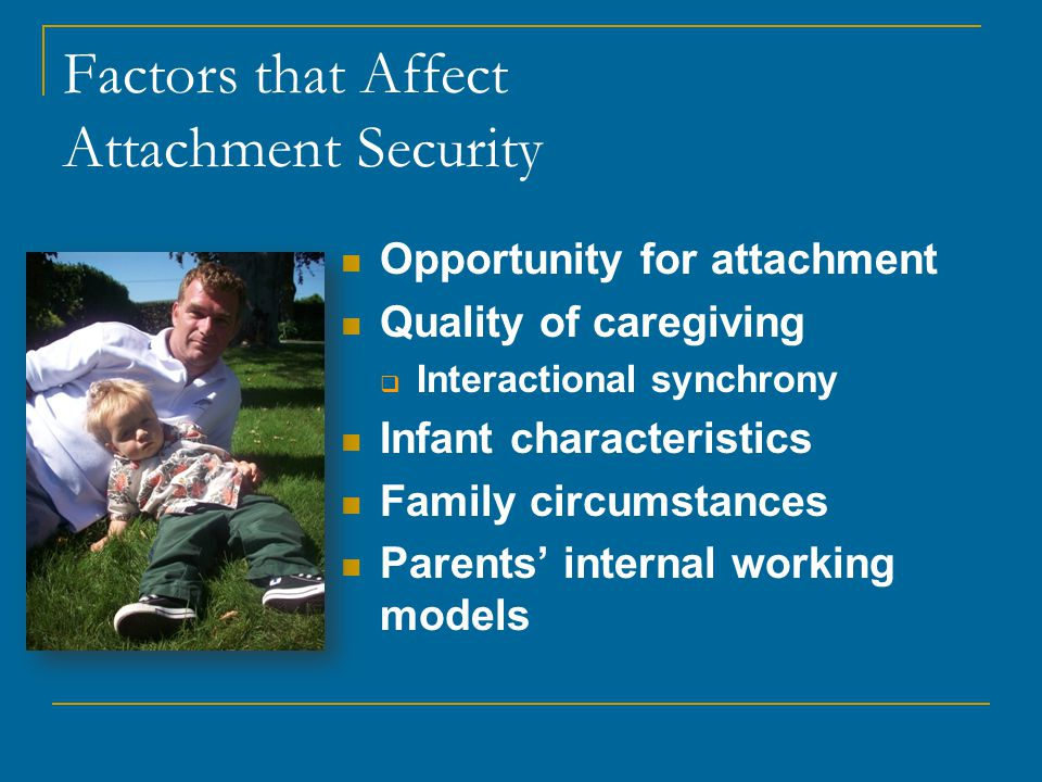 Factors that Affect Attachment Security Opportunity for attachment Quality of caregiving  Interactional synchrony Infant characteristics Family circumstances Parents' internal working models