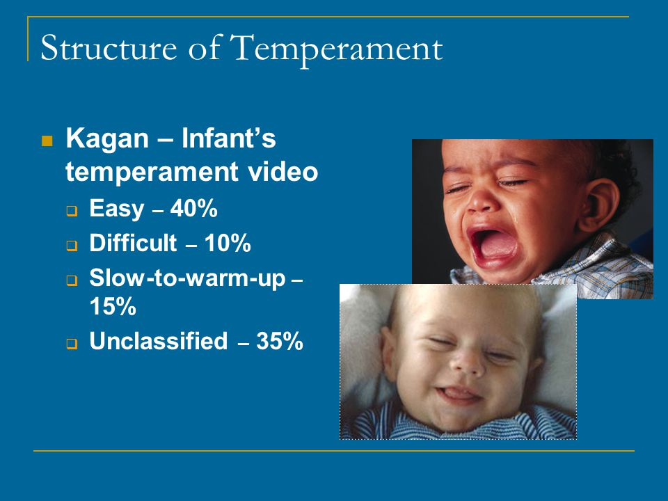 Structure of Temperament Kagan – Infant's temperament video  Easy – 40%  Difficult – 10%  Slow-to-warm-up – 15%  Unclassified – 35%