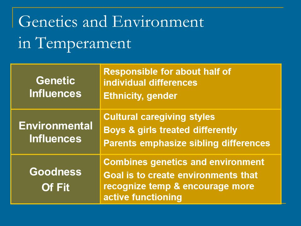 Genetics and Environment in Temperament Genetic Influences Responsible for about half of individual differences Ethnicity, gender Environmental Influences Cultural caregiving styles Boys & girls treated differently Parents emphasize sibling differences Goodness Of Fit Combines genetics and environment Goal is to create environments that recognize temp & encourage more active functioning
