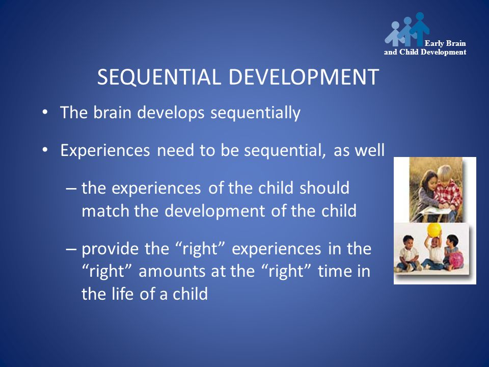 SEQUENTIAL DEVELOPMENT The brain develops sequentially Experiences need to be sequential, as well – the experiences of the child should match the development of the child – provide the right experiences in the right amounts at the right time in the life of a child Early Brain and Child Development