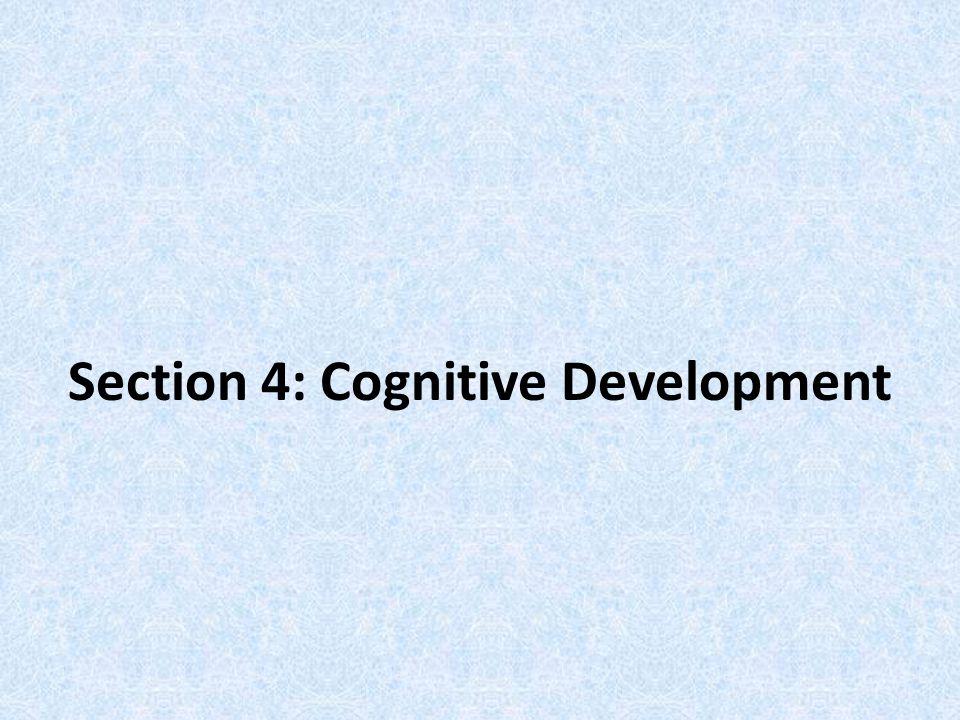 Section 4: Cognitive Development
