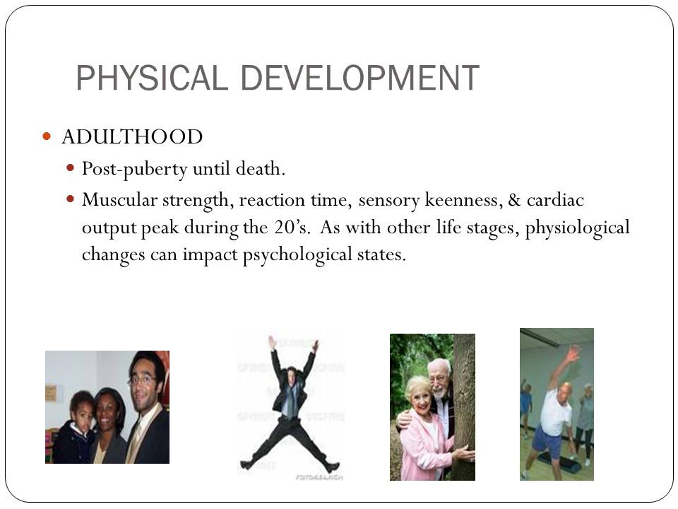 PHYSICAL DEVELOPMENT ADULTHOOD Post-puberty until death. Muscular strength, reaction time, sensory keenness, & cardiac output peak during the 20's. As