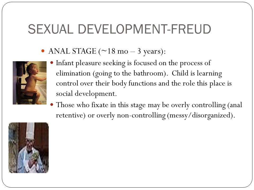 SEXUAL DEVELOPMENT-FREUD ANAL STAGE (~18 mo – 3 years): Infant pleasure seeking is focused on the process of elimination (going to the bathroom).