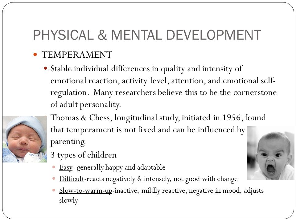 PHYSICAL & MENTAL DEVELOPMENT TEMPERAMENT Stable individual differences in quality and intensity of emotional reaction, activity level, attention, and emotional self- regulation.