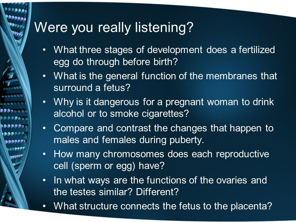 Were you really listening? What three stages of development does a fertilized egg do through before birth? What is the general function of the membran