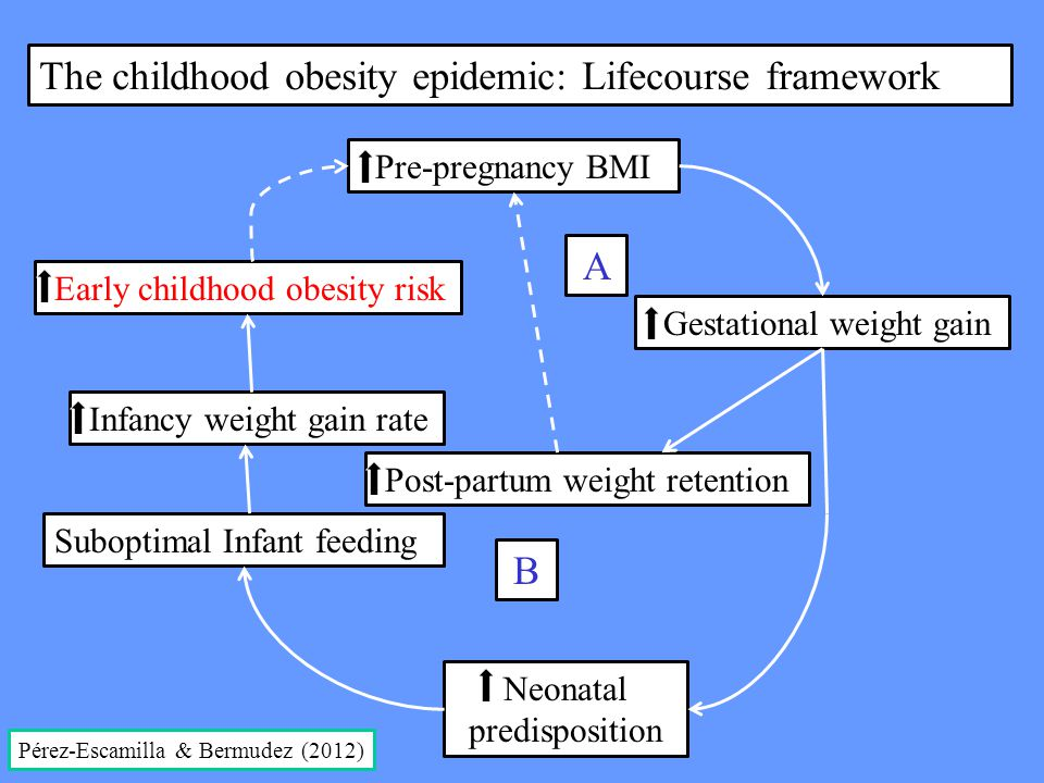 Pre-pregnancy BMI Gestational weight gain Post-partum weight retention Neonatal predisposition Suboptimal Infant feeding Infancy weight gain rate Earl