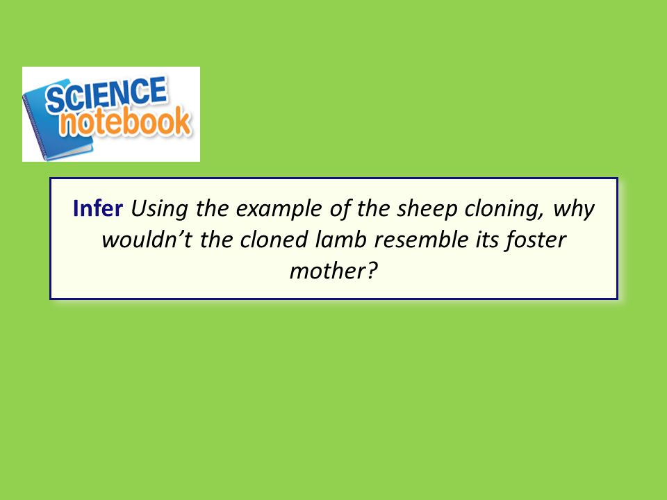 Infer Using the example of the sheep cloning, why wouldn't the cloned lamb resemble its foster mother?
