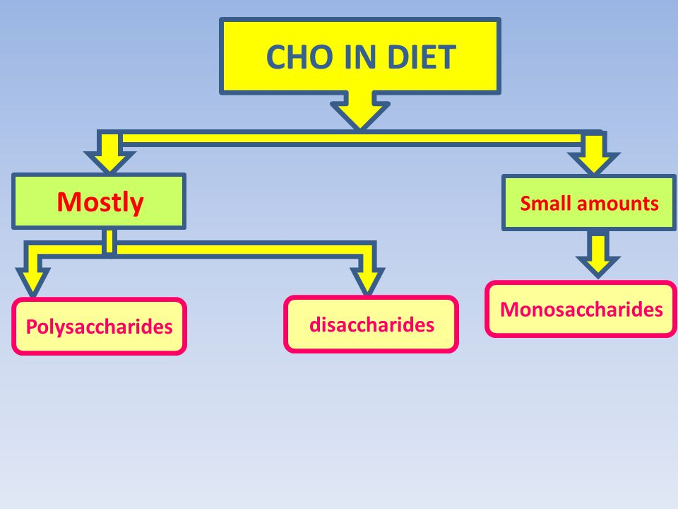 CHO IN DIET Mostly Small amounts Polysaccharides disaccharides Monosaccharides