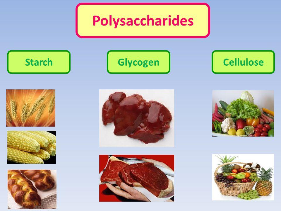 Polysaccharides StarchGlycogenCellulose