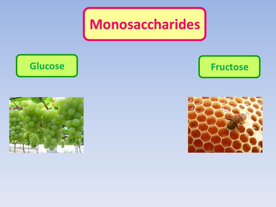 Monosaccharides Glucose Fructose